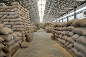 Ethiopian Coffee Beans For Trade Members