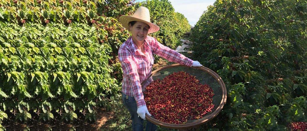 Mexican Coffee Farmer